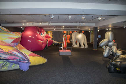 Room of Inflatables
